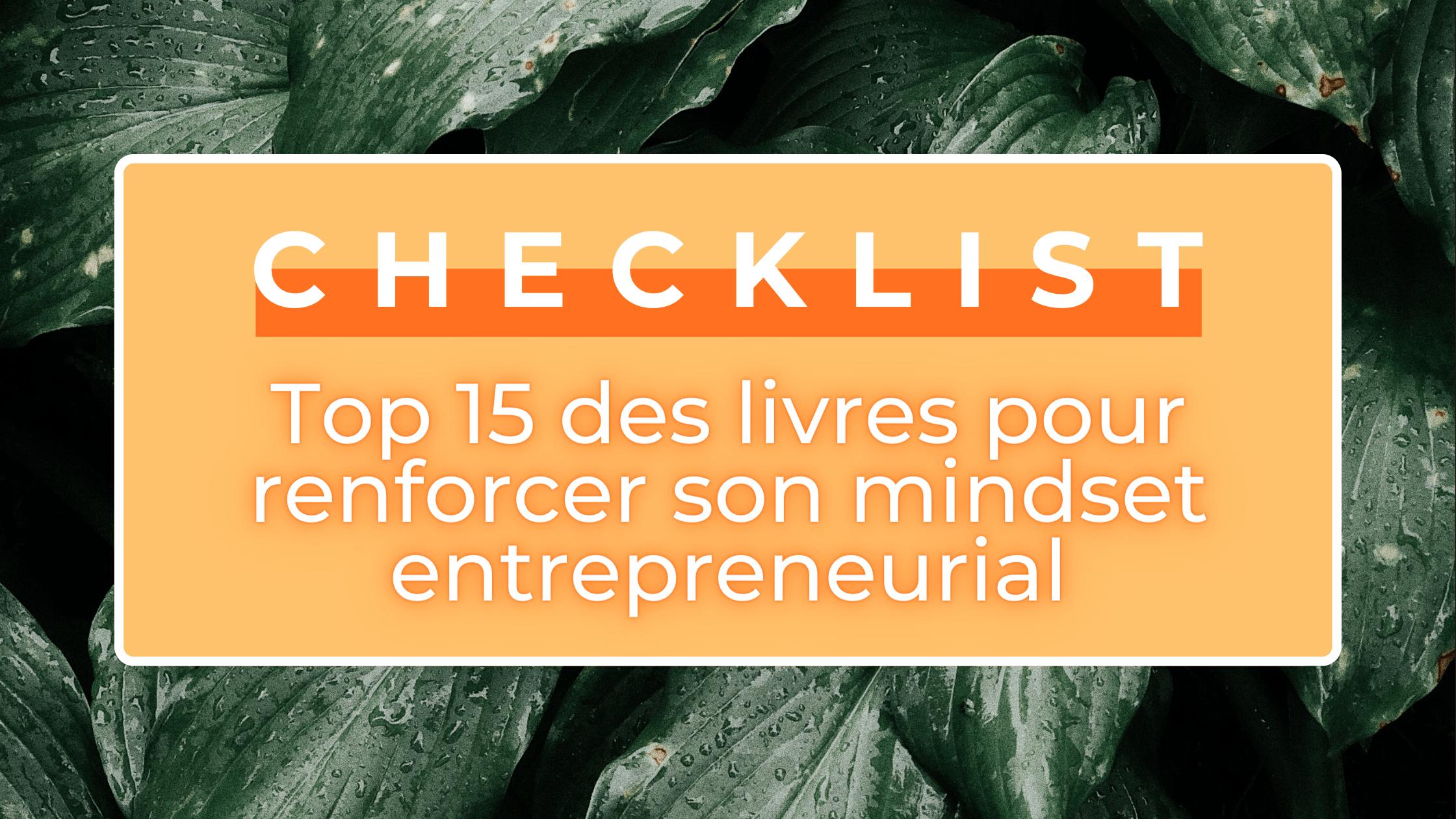 mindset entrepreneurial